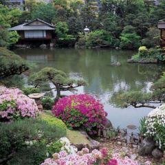 Sorakuen Garden User Photo