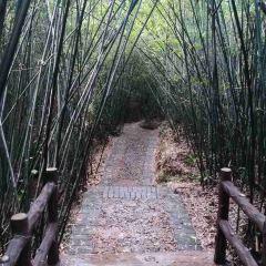 Qinglongyan Sceneic Area User Photo