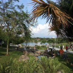 Shangri-la Rasa Ria Nature Reserve User Photo
