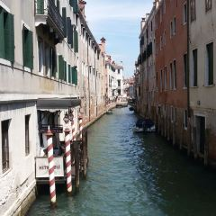 MM Venezia User Photo