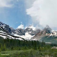 冰原大道用戶圖片