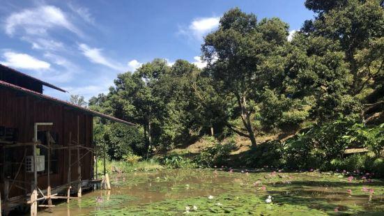 Jepak 漁村
