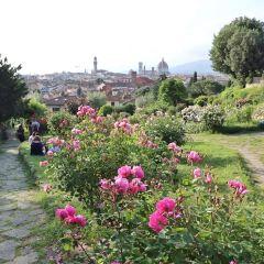 Bardini Garden User Photo