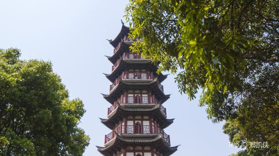 黃賢國家森林公園