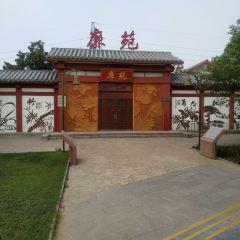 劉禹錫墓用戶圖片