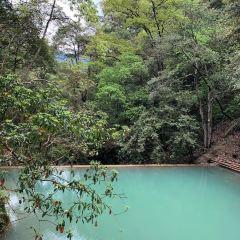 巾子峰森林公園用戶圖片