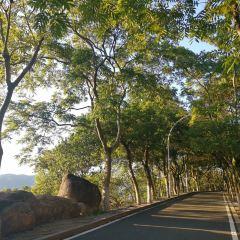 Qilinshan Park User Photo