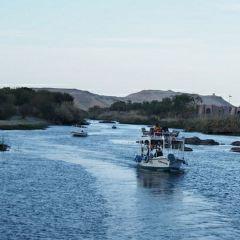 エレファンティネ島のユーザー投稿写真