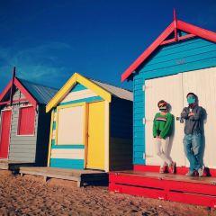 布萊頓海灣用戶圖片