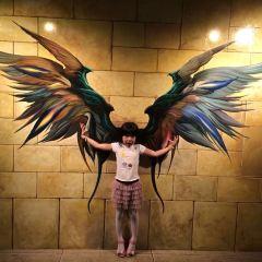 愛來魔相4D藝術館(濟州中文館)用戶圖片