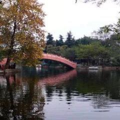 浉河公園用戶圖片