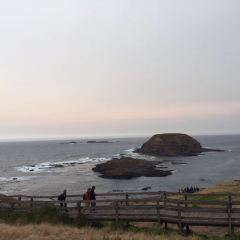 Phillip Island User Photo