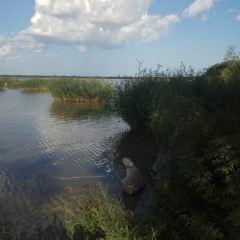 大安嫩江灣國家濕地公園用戶圖片