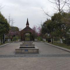 남호공원 여행 사진