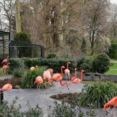 中央公園動物園用戶圖片