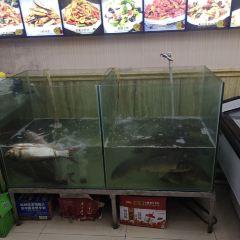 野生魚館用戶圖片