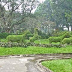 植物園張用戶圖片
