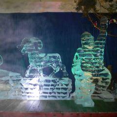Ice Museum User Photo