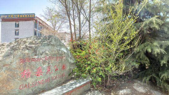 格桑花公園