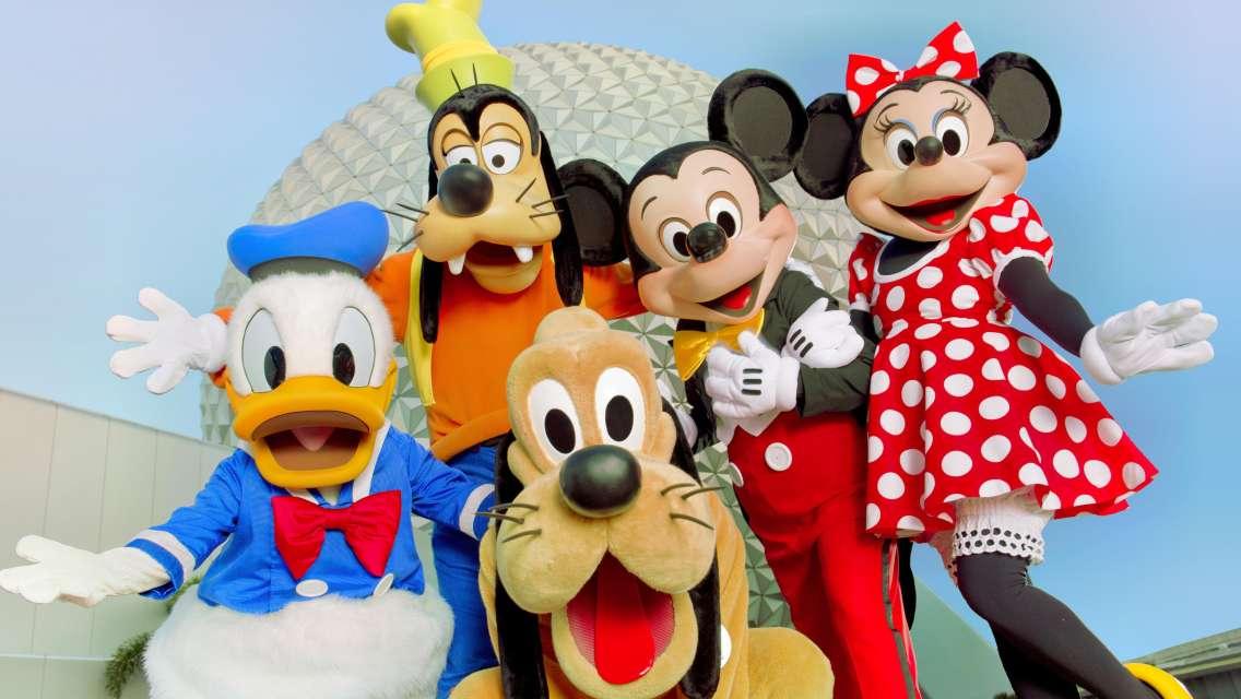 Walt Disney World Resort in Orlando Ticket