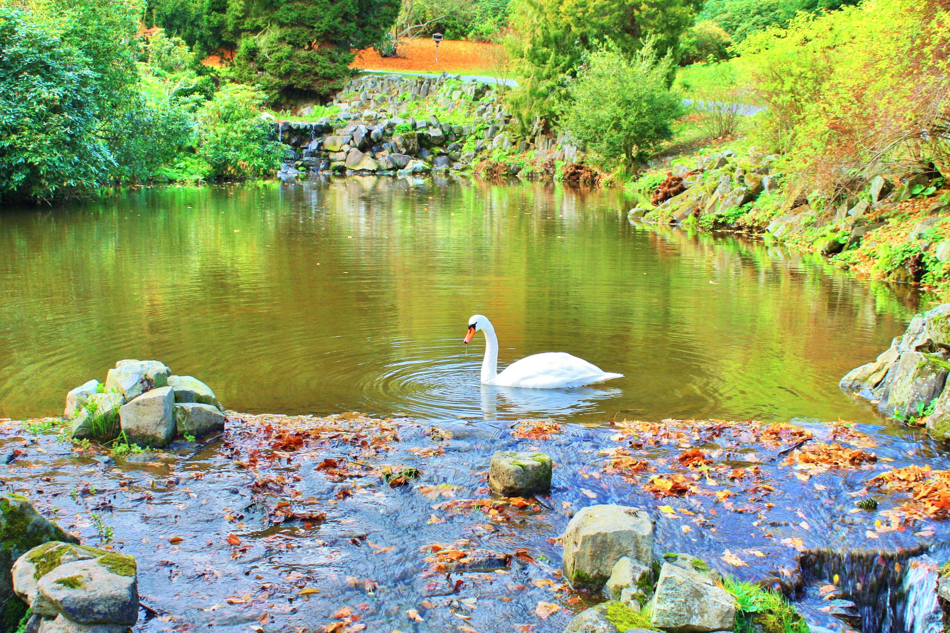 威廉高地公園