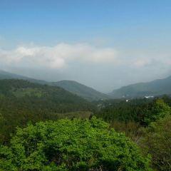 Xitou Nature Eduction Area User Photo