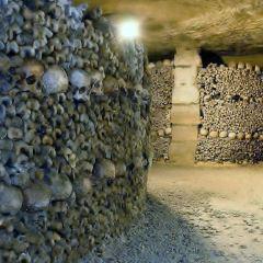 巴黎地下墓穴用戶圖片