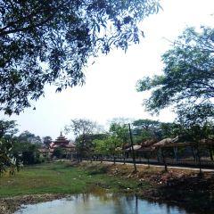 達拉鎮用戶圖片