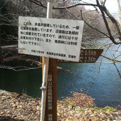Shirakami Sanchi User Photo