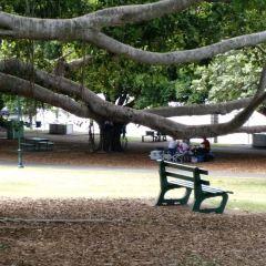 Mowbray Park User Photo