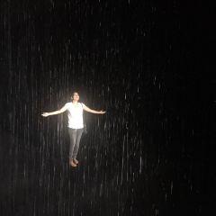Rain Room User Photo