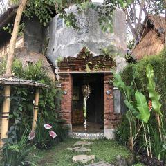 Ubud User Photo
