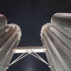 페트로나스 트윈 타워 여행 사진