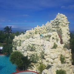 코코넛 궁전 여행 사진
