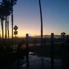 Muscle Beach User Photo