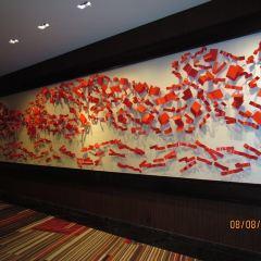 貝拉吉奧藝術展覽館用戶圖片
