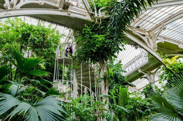 邱園皇家植物園