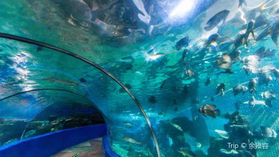 Wuxi Underwater World