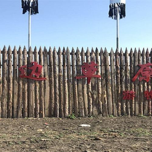 190天邊草原遊牧部落