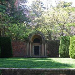Sydney Gardens User Photo