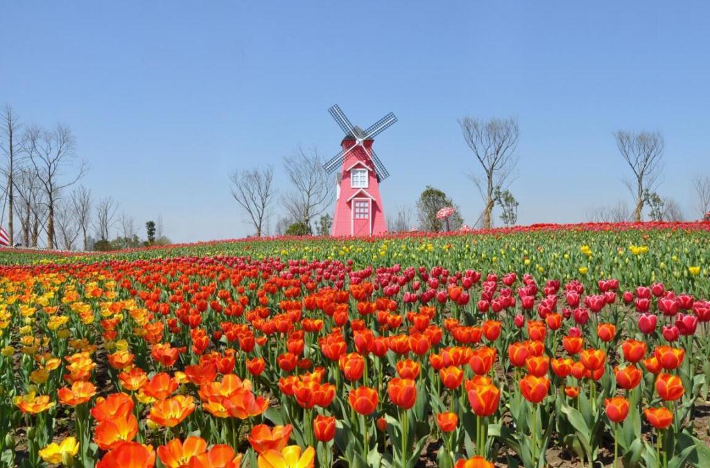 Yunlanwan-Four Seasons Flower Park