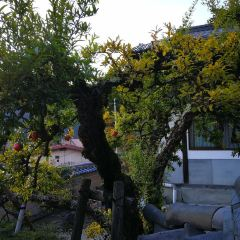 Gojo Bridge User Photo