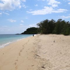 弗蘭克蘭德群島用戶圖片