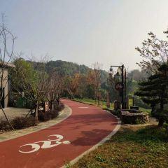 皋亭山景區用戶圖片