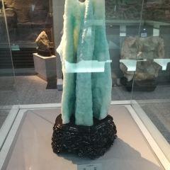 新疆地質礦產陳列館用戶圖片