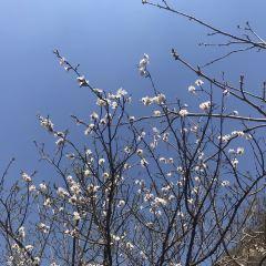 Dalinggou Sceneic Area User Photo