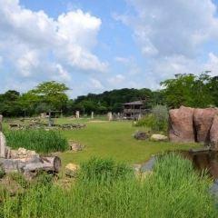 萊比錫動物園用戶圖片