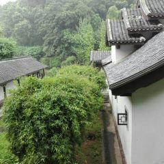 Qingfengge User Photo