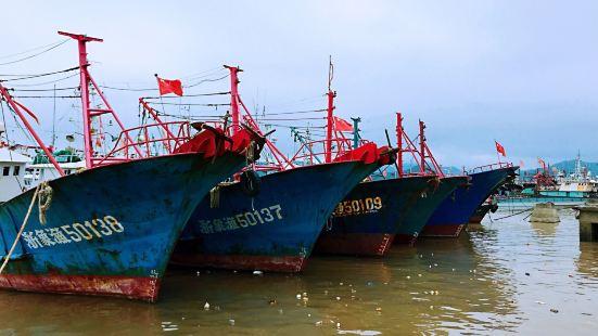 石浦镇以石浦渔港得名,长长的沿海道路,满眼的泊港船只,感受到