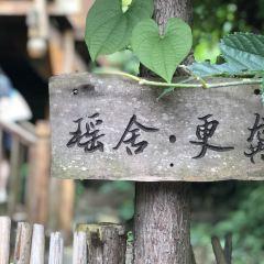 Understand Meng Yaozhai User Photo